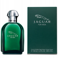 Мужская парфюмерия Jaguar for Men (Green) (Ягуар фо Мен (Грин)) от интернет-магазина aromaniya.ru
